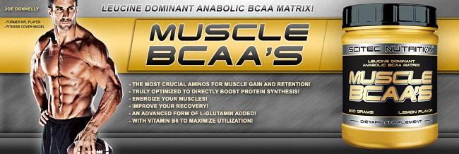 Muscle BCAA's