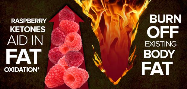 SAN Blaze Unleashed