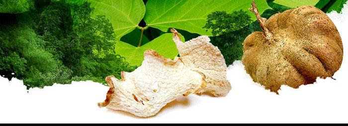 Пуерария мирифика (Pueraria mirifica)