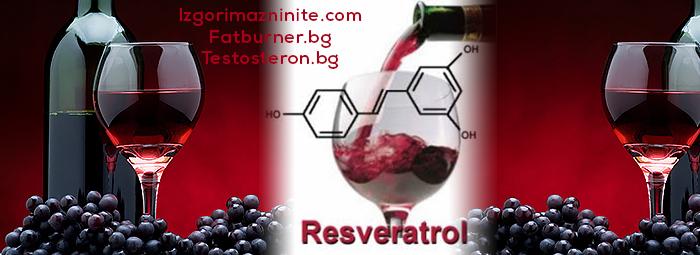 Ресвератрол (Resveratrol) - какво е това