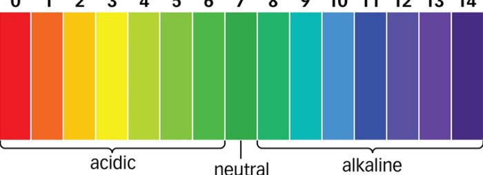 Таблица на оксидиращите и алкализиращите храни