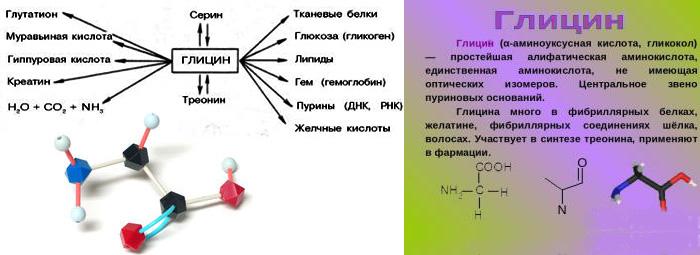 ГЛИЦИН (Glycine) - малко известна aминокиселина, но с ценни качества