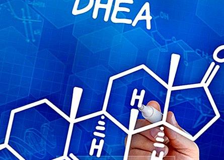 DHEA – ползи и странични ефекти