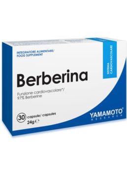 Yamamoto BERBERINA