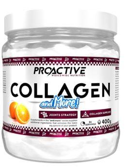 ProActive COLLAGEN and MORE - ĸoлaгeн, MSM, хондроитин