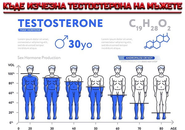 Къде изчезна тестостерона на мъжете