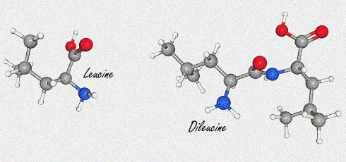 Анаболния ефект на ДИЛЕВЦИН (Dileucine) 2